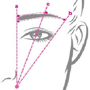 Eyebrow Transplant Process - Eyebrow Transplant Turkey - Best Eyebrow Transplant